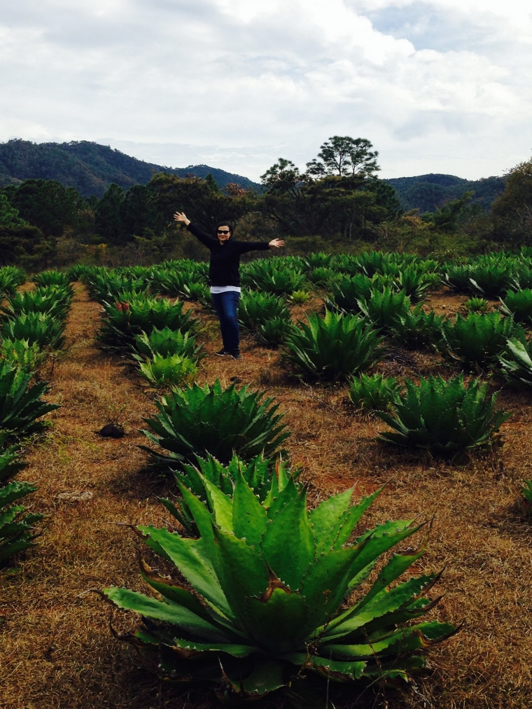 Yo soy Michoacana con agaves Cupreta